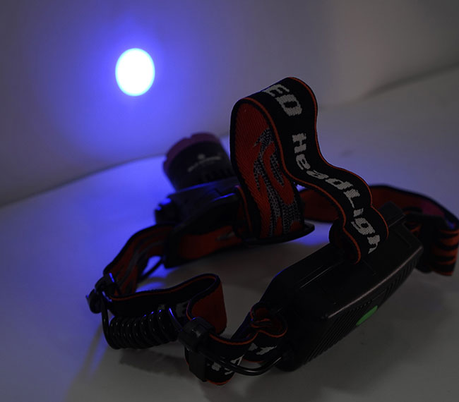 SL3100-5